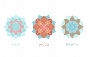 アーユルヴェーダで重要な用語「ドーシャ」とは? トリドーシャ、プラクティ、ビクリティにいたるまで徹底解説
